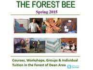 Click here to download the Forest Bee